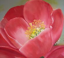 Japanese Quince by Claudia Goodell