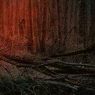 Elfen Forest by RosiLorz