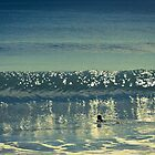 Wave reflections by NovaScOcean