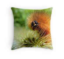 Fuzzy Caterpillar Throw Pillow