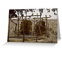 Tanning leather, Malawi Greeting Card