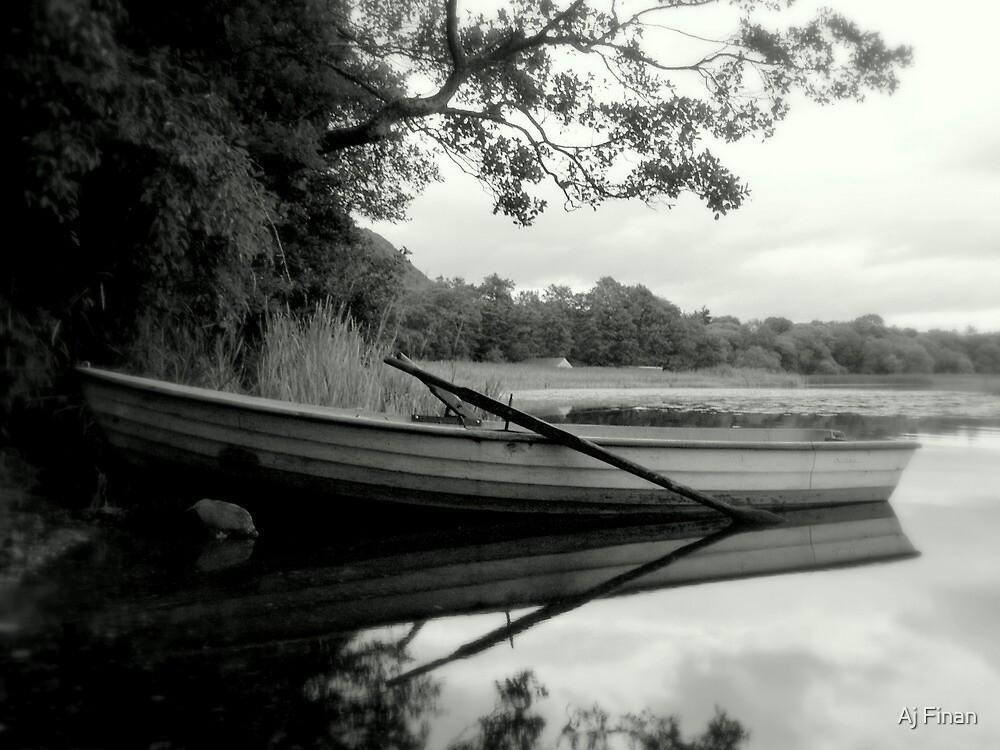 Boat Of Dreams. by Aj Finan