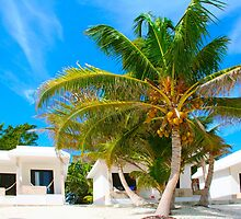Caribbean beach in Tulum, MEXICO by Atanas Bozhikov NASKO