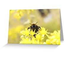 Golden Bee Greeting Card