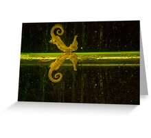 Seahorse_mirrored Greeting Card