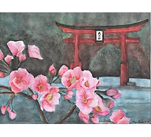 """""""A Vision of Dhyana"""" Close up of cherry blossoms  Photographic Print"""