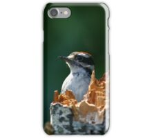 Downy Woodpecker iPhone Case/Skin