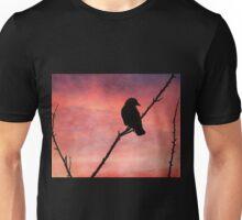 Jackdaw Sunset Unisex T-Shirt