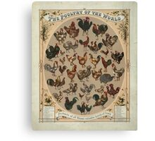 Poultry of the World (1868) Canvas Print
