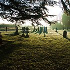 Churchyard in Evening Light by extrajection
