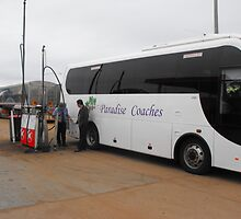 A Coach to Paradise by 4spotmore