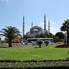 Blue Mosque, Istanbul, Turkey by Pat Herlihy