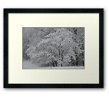 silent white Framed Print