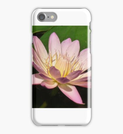 A PRIVATE WORLD of BEAUTY iPhone Case/Skin