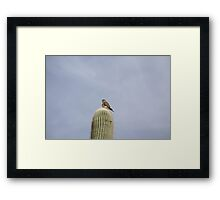 """""""Look Mom, I'm on top of the world!"""" Framed Print"""
