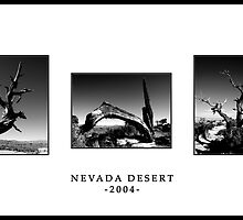 Nevada by Lisa Sweet