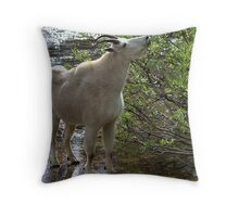 Lakeside Cafe Throw Pillow
