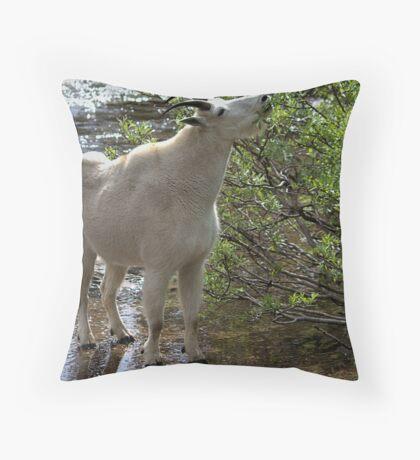 Lakeside Cafe Throw Pillow