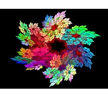 Flower Fractal Photographic Print