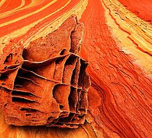 Rock Skeleton  by Inge Johnsson