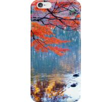 Autumn Colours 7 iPhone Case/Skin