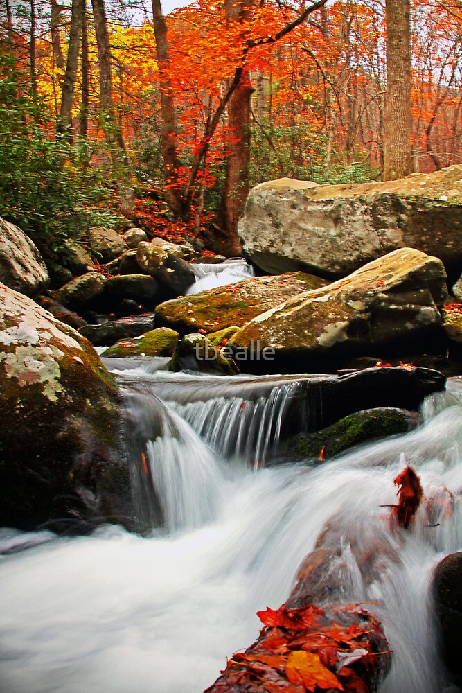 ~Go With the Flow~ by Terri~Lynn Bealle