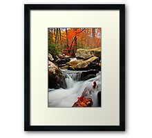 ~Go With the Flow~ Framed Print