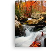 ~Go With the Flow~ Canvas Print