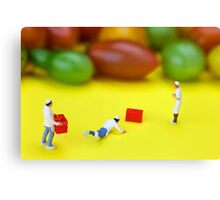 Chef Tumbled In Front Of Colorful Tomatoes miniature art Canvas Print