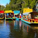 Xochimilco's Floating Gardens in Mexico City by Atanas Bozhikov NASKO