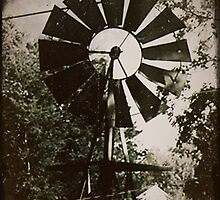 Old Windmill by Sarah Stults