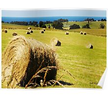 Making Hay while the Sun shines Poster