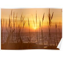 Sunset on Delaware Bay Poster