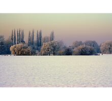 """WINTER GLADE"" Photographic Print"