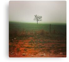 Standing alone... Canvas Print