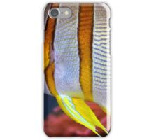 Butterfly Fish iPhone Case/Skin