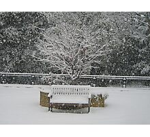 Snow bench - Woking Surrey Photographic Print