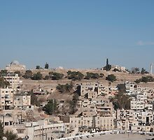 The Citadel, Amman by Mark Prior