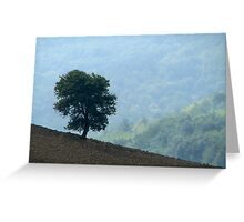 Lone Tree - Tuscan Hillside, Italy Greeting Card