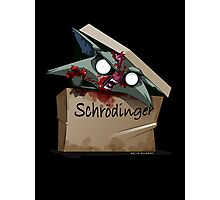 Schrödinger's Cat Solution Photographic Print