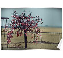 Persimmon Tree Poster