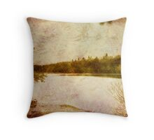 February at Parker Dam State Park Throw Pillow