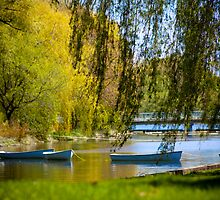 Summer Boats - Toronto Island by Ken  Yan