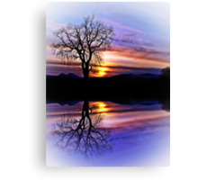 The Tree Of Reflections Canvas Print