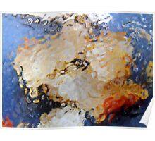 clementine rind under glass Poster