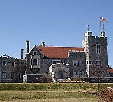 Glamorgan Castle by Monnie Ryan