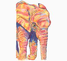 Colourful / Colorful Baby Elephant Portrait Unisex T-Shirt