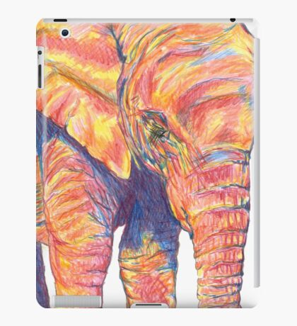 Colourful / Colorful Baby Elephant Portrait iPad Case/Skin