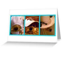 Living Hat Racks Greeting Card