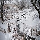 Winter Stream by Mark David Barrington